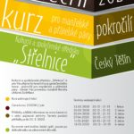 tanecni-manz-pokrocili-2020