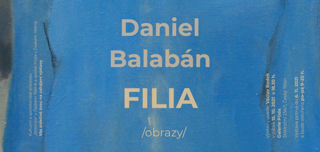 Daniel Balabán / Obrazy